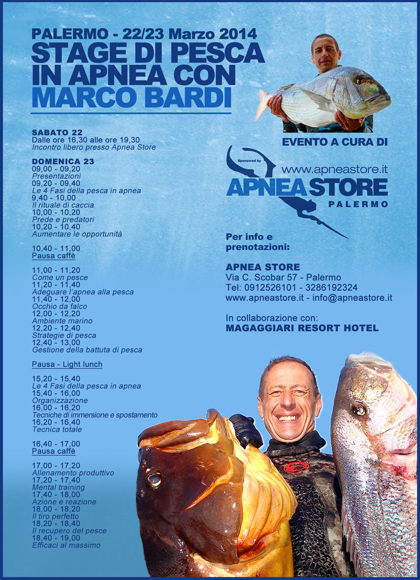 stage-marco-bardi